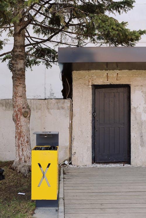 Black Wooden Door Beside Brown Tree