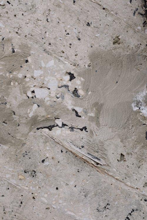 Foto d'estoc gratuïta de formigó, mur, paret, pis