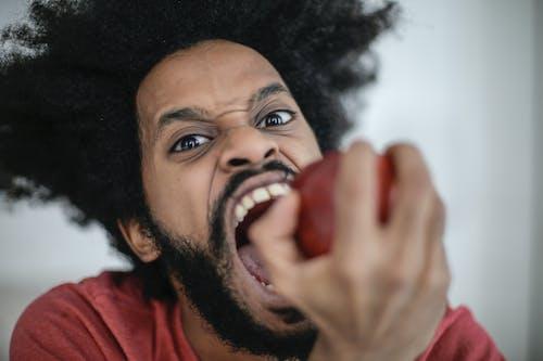 Fotos de stock gratuitas de apple, barba abundante, barba poblada