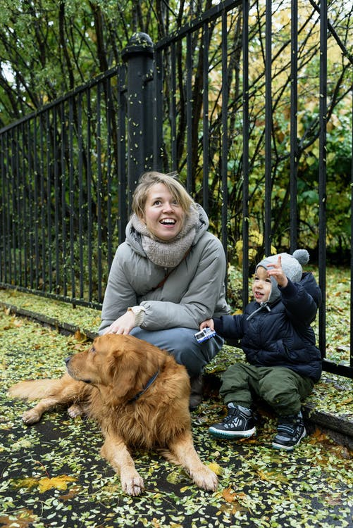 Woman in Gray Jacket Sitting with Her Son Beside Brown Dog