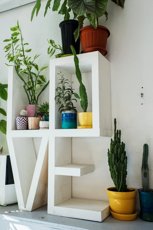 Gray shelf with decorative construction in shape of LOVE word placed near white wall with potted succulents and other houseplants in soft daylight