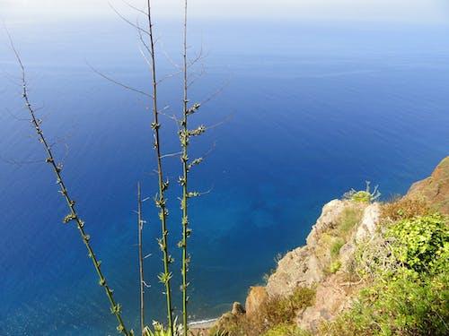 Free stock photo of beautiful, nature, ocean