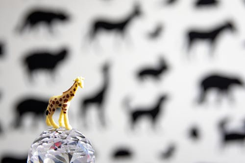 Crystal Ball with Toy Giraffe on Top
