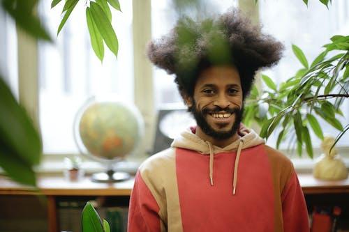 Fotos de stock gratuitas de adentro, afro, cabello afro