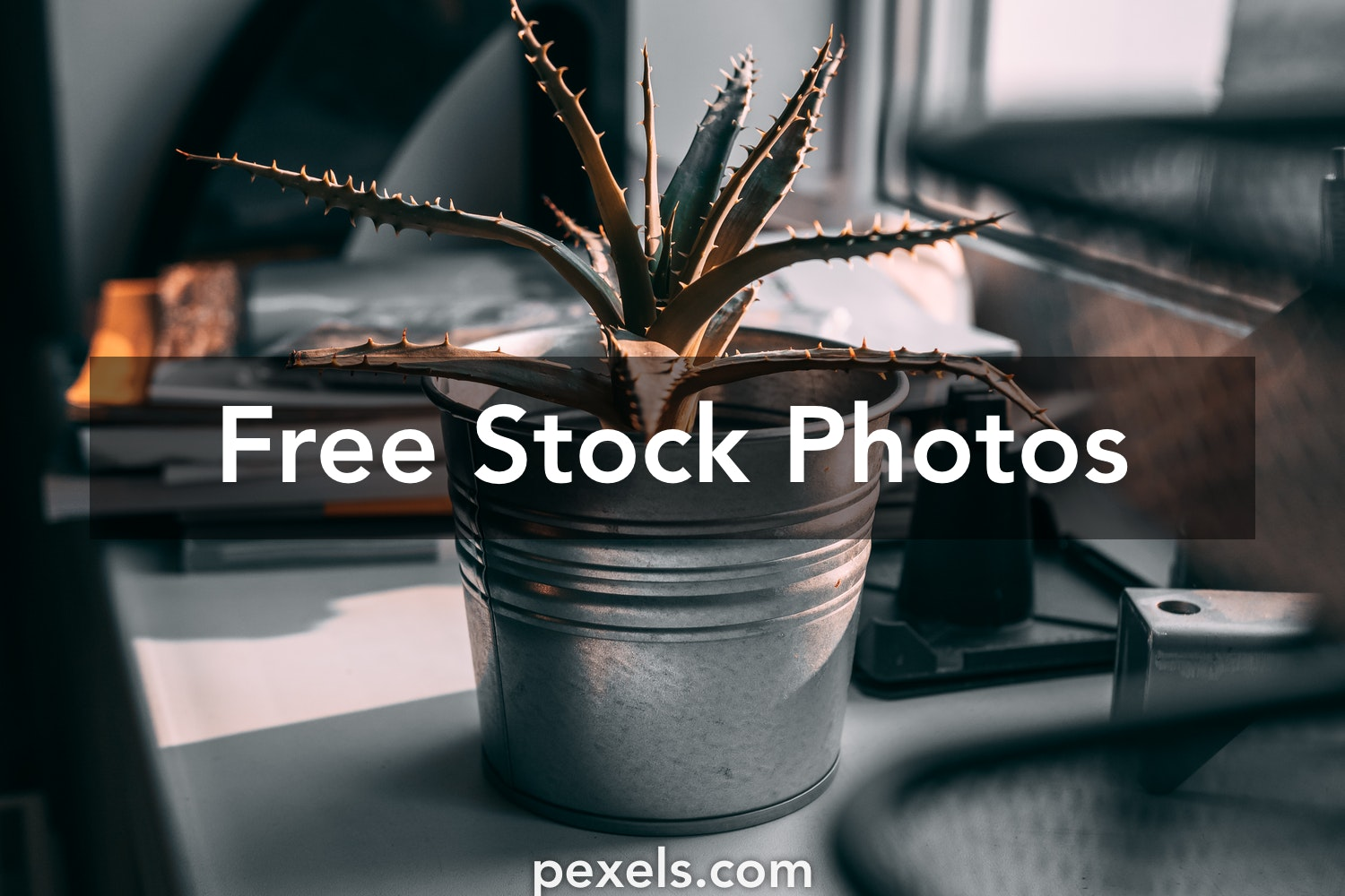 1000 Great Steel Bucket Photos Pexels Free Stock Photos