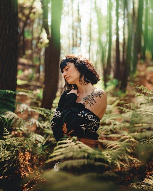 Foto d'estoc gratuïta de a l'aire lliure, alba, arbres, bellesa