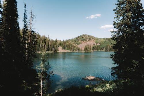 Gratis lagerfoto af bjerg, Colorado, dagslys, facebook cover