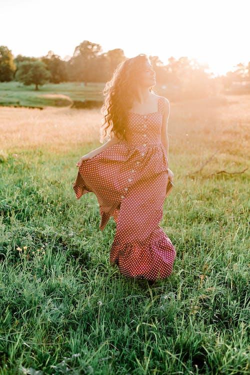 Foto d'estoc gratuïta de a l'aire lliure, bonic, brillant, cabells arrissats