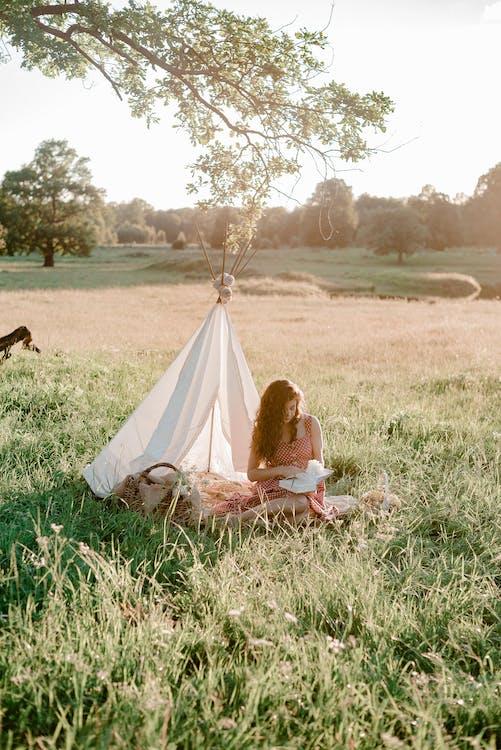 Základová fotografie zdarma na téma čtení, denní světlo, hřiště