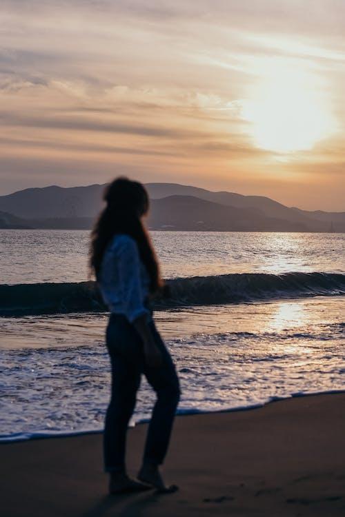 바다, 사람, 새벽, 실루엣의 무료 스톡 사진