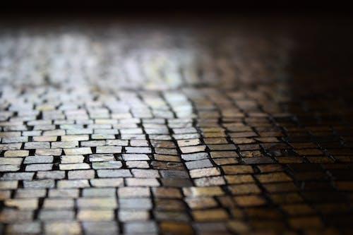 Безкоштовне стокове фото на тему «візерунок, Вулиця, земля, макрофотографія»