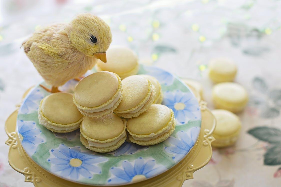 Yellow Chick on Yellow Macarons
