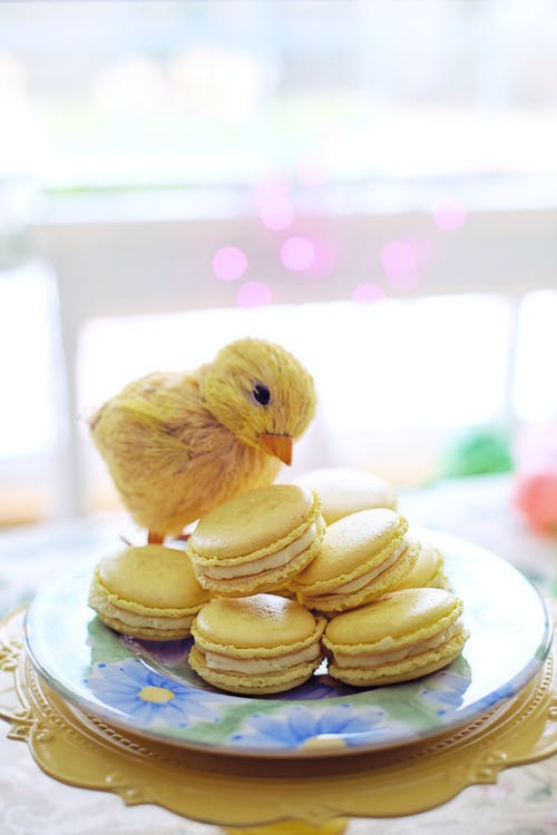 Yellow Chick Toy and Yellow Macarons on Floral Ceramic Plate