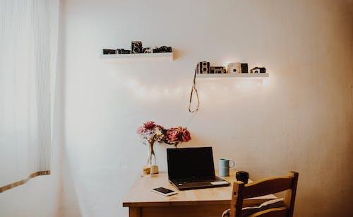Gratis lagerfoto af boligindretning, bord, estudio, familie
