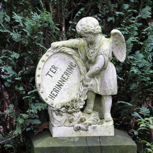 Imagine de stoc gratuită din piatră de mormânt specială