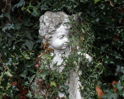 Imagine de stoc gratuită din statuie printre tufișuri