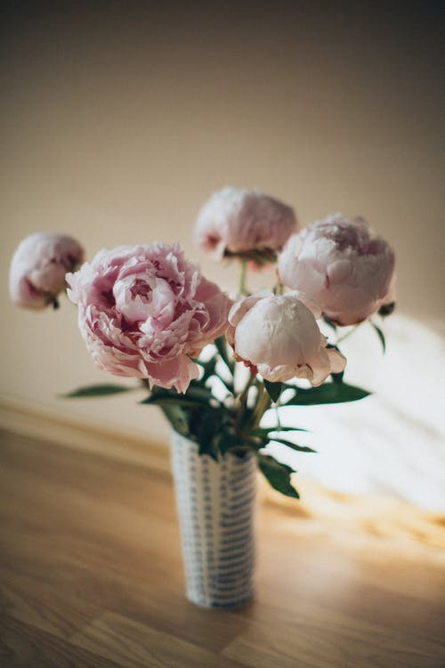 Selective Focus of Pink Garden Roses  in a  Vase