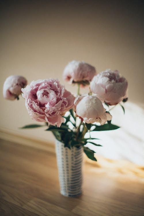 Enfoque Selectivo De Las Rosas De Jardín Rosadas En Un Jarrón