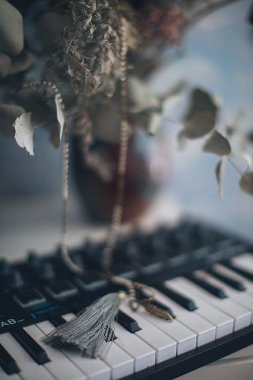 Foto d'estoc gratuïta de borla, instrument musical, piano