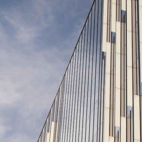 對比, 摩天大樓, 玻璃窗, 藍天 的 免費圖庫相片