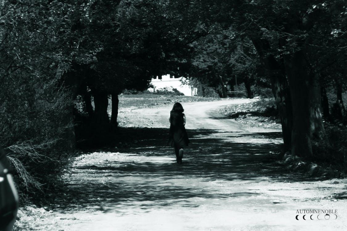 Foto d'estoc gratuïta de amb amor, amor, àncora a l'àncora