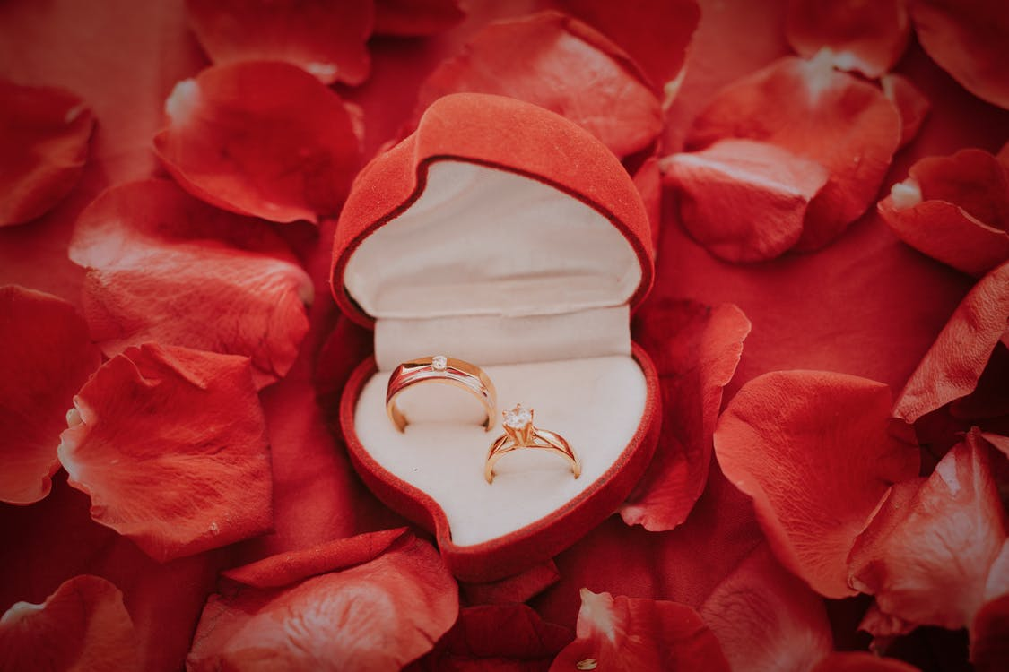 Gold Wedding Band on Red Flower Petals