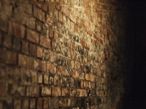 Free stock photo of dark, wall, tunnel, brick wall
