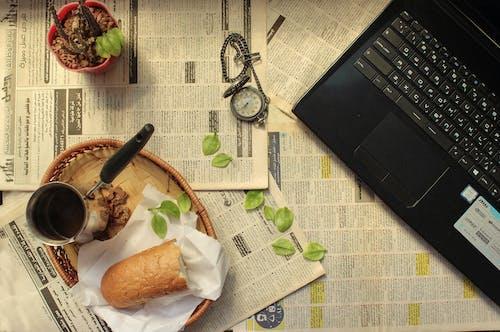 Imagine de stoc gratuită din afaceri, bani, birou, cactus