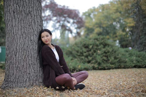 Gratis arkivbilde med alene, anlegg, årstid, Asiatisk