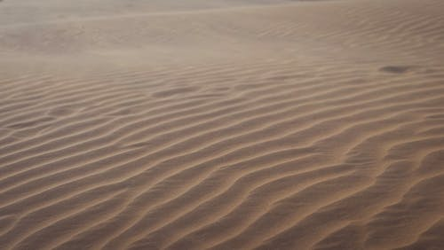 Brown Sand With Water