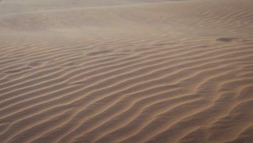 乾旱, 乾旱氣候, 乾的, 冒險 的 免費圖庫相片