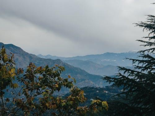 Free stock photo of atmosphere, atmospheric mood, awe