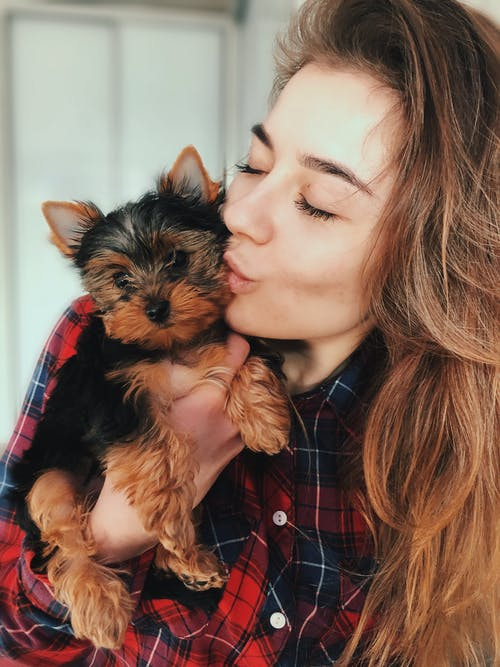 Woman Kissing Yorkshire Terrier