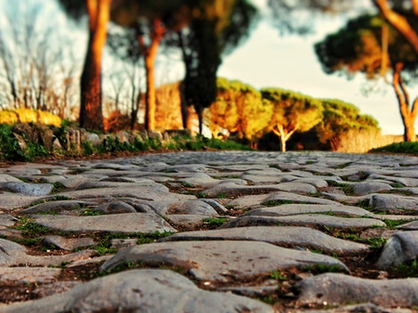 Free stock photo of roma, italia, natura, old street