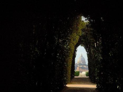 Free stock photo of vista, roma, italia, porta