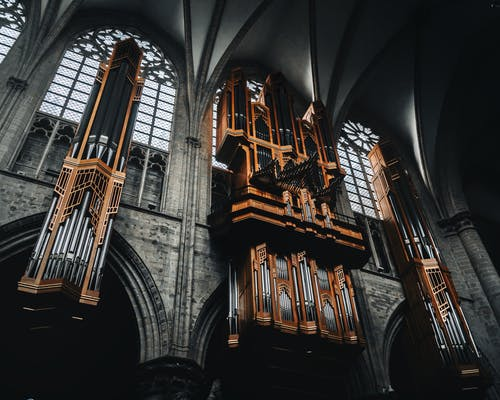 Brown Organ