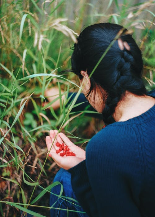 Person Picking Berries