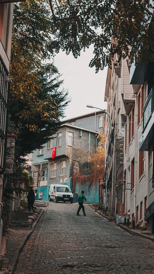 Free stock photo of ağaç, araba, Arnavut kaldırımlı sokak, eski ev
