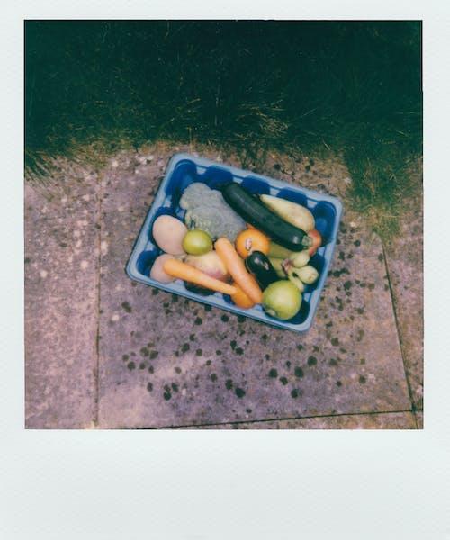 宝丽来照片的蓝色塑料容器中的食物