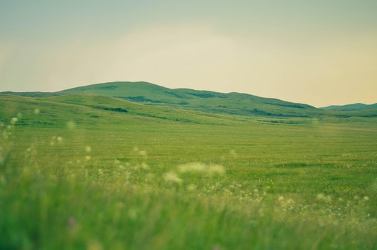 Free stock photo of landscape, mountains, nature, grass