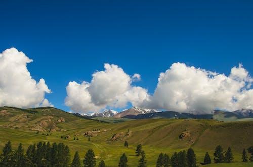 Foto d'estoc gratuïta de herba, muntanyes, natura, núvols
