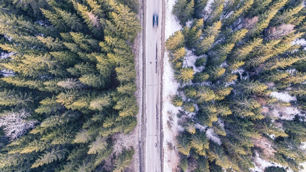 Free stock photo of cold, snow, bird's eye view, road