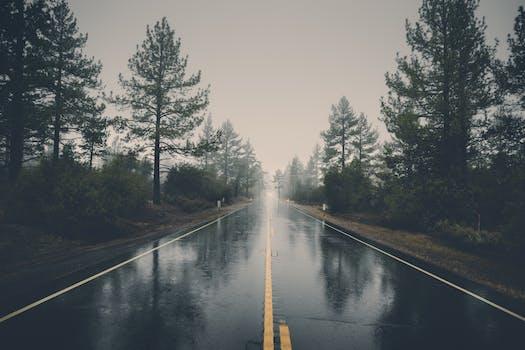 Foto de archivo libre de camino, paisaje, naturaleza, bosque