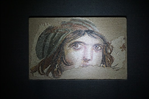 Free stock photo of museum, mosaic, gaziantep, zeugma