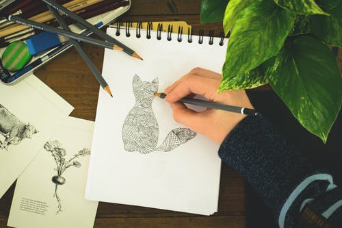 Person Sketching Cat