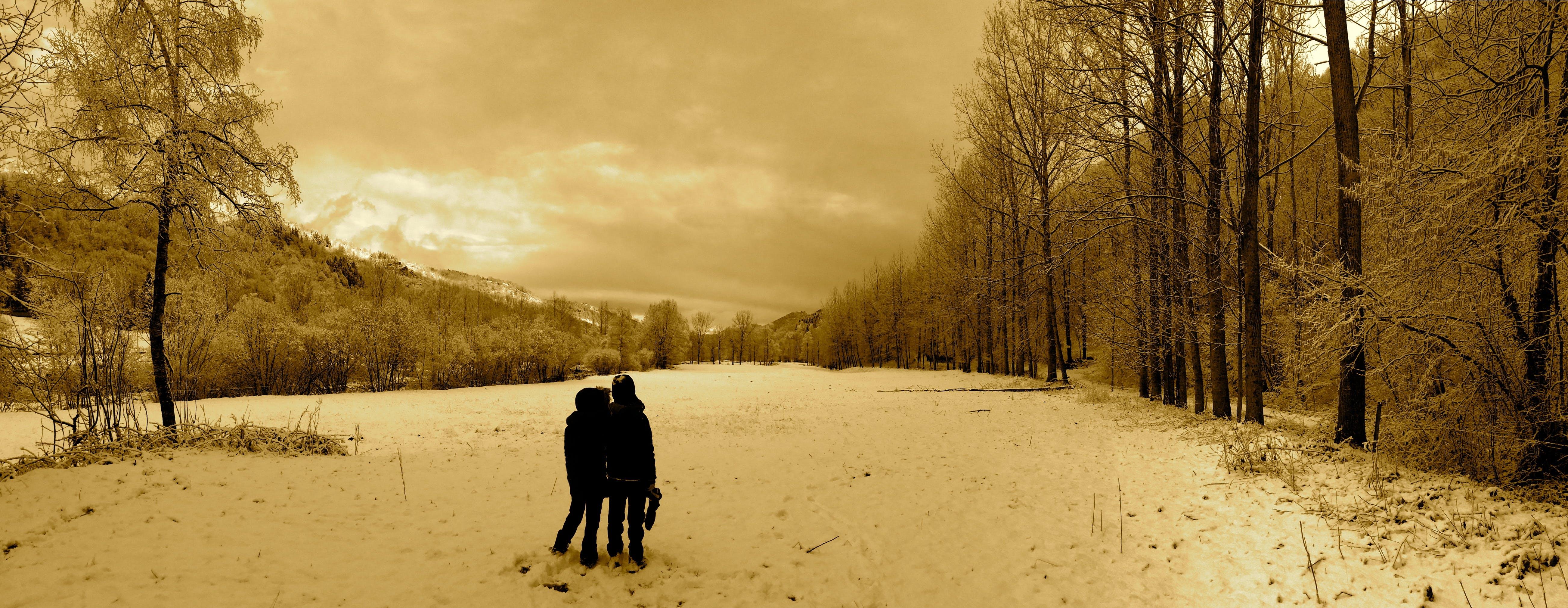 Free stock photo of nieve, paisaje