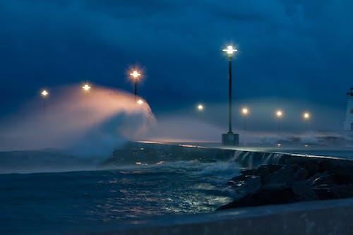 招手, 暴風雨, 風 的 免费素材照片