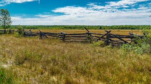 分裂铁路, 围栏, 木柴 的 免费素材照片
