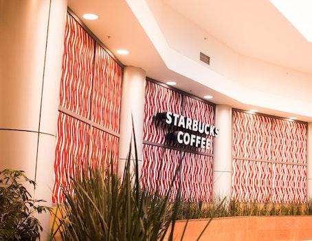 Free stock photo of coffee, architecture, design, starbucks