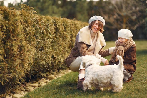Mother and daughter playing with dog on grass near hedge